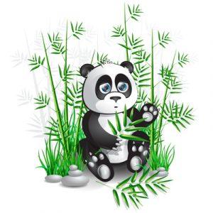 0_Panda.jpg