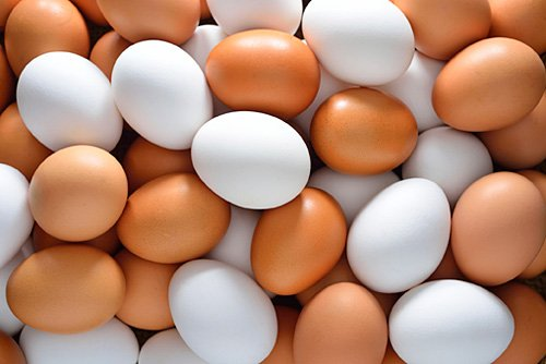 Dozens of eggs